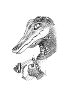 The alligator by pachryso