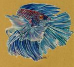 Betta Splendens by Yoite7