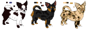 Chihuahua Designs for Darkwood-Hills by GuardianOfJay
