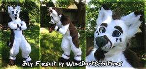 Jay Fursuit by WindDartCreations