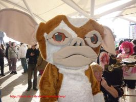 Gizmo Gremlins Cosplay by Black-Cat-1