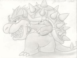 bowser 3 by hairykoopa