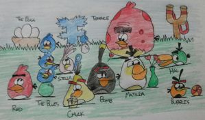 Angry Birds - Current drawings of the Angry Birds by AngryBirdsStuff