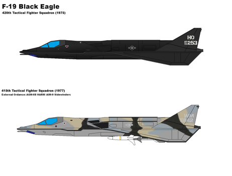F-19 Black Eagle Stealth Fighter by PaintFan08