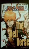 Bleach THE HELL VERSE Book by rinyamato2690