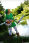 Stance of a Hero - Toon Link by nekomatalee