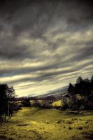 the braes by martybell