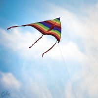 Fly-A-Kite by Eibography