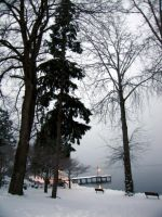 Snowy Kirkland 1 by skizatch