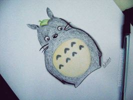 Totoro by WivianeSoares