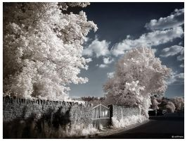 Secret Garden iR by caithness155