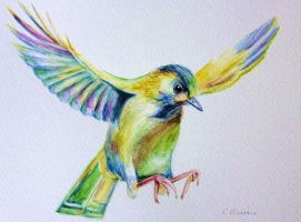 Flying Bird - Watercolour by christina-0o