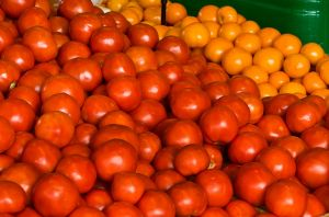 Tomatoes by muffet1