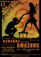 Revenge of the Amazons poster by Ice-222