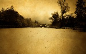 Gloomy Snow by musback