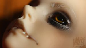 Billy Fae - Faceup Details 01 by IcarusLoveMedley