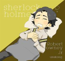holmes by usukong