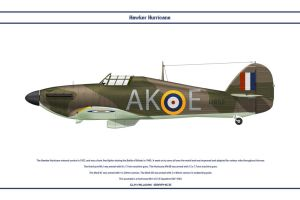 Hurricane GB 213 Sqn by WS-Clave