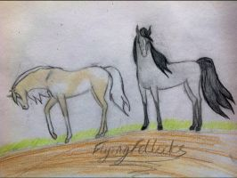SHS Pearl and Fly---SALE by Flyingfetlocks