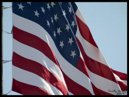 American Flag by timlori