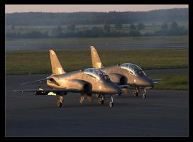 The Midnight Hawks by 2air
