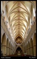 Wells cathedral by richardldixon