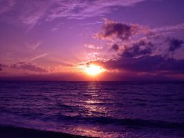 Violet Sunset over Sea by Liudochka