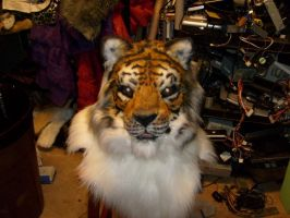 Tiger with full night vision package by Thundolis