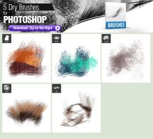 5 Dry Brushes for Photoshop by pixelstains