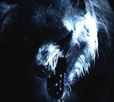Lycan by LycanKing666