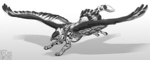 More poofy gryphon by KFCemployee