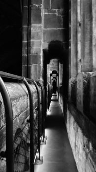 Chester Cathedral High Gallery by dhc72
