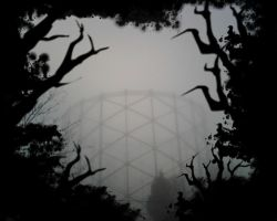 the mist brings shadows by Zombie-ED