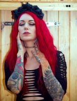 Cervena Fox by predator-fan