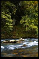 Creek - 03 by AndreasResch