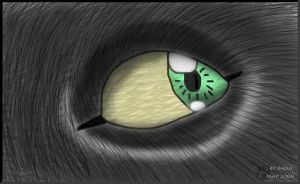 Jhoue's eye by Jhoue