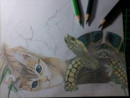 WIP: A Cat and now there is a weird turtle by kaisaki1342