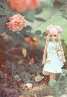My Little Rose - 2 by thelocksley