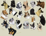 dog icons - HERDING GROUP by shelzie