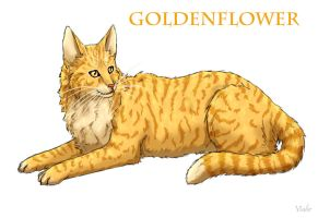 Goldenflower by Vialir