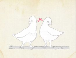 pigeons in love by Fabriga