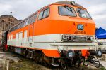 Beast in orange by Budeltier