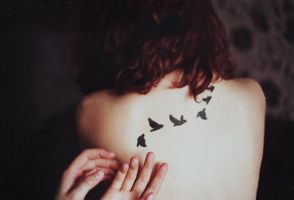 NIGHT BIRDS by laura-makabresku