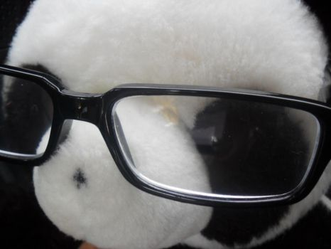 Panda-chan's glasses :D by chuwii