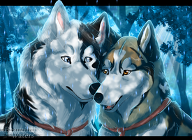 Our first morning of rain...+ Speedpaint by Beautiful-Waters