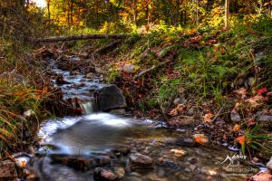 HDR Ditch by Nebey