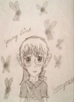Young Link by Sunnyme60