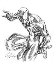 BLACK SUIT SPIDEY sketch by CdubbArt