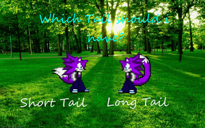 Which Tail should i have by LeonTheSnowWolf