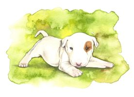 Baby Aleph by saraquarelle
